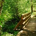 Bridge over Keenig Creek along the Wilson River Trail.- Keenig Creek Campground