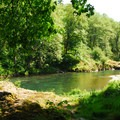 View toward Wilson River and swimming area.- Keenig Creek Campground