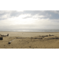 Beach at Barview Jetty County Park.- Barview Jetty County Park