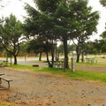 RV (full hook-up) site area.- Barview Jetty County Park Campground