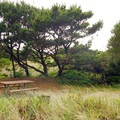 Walk-in campsite adjacent to the beach.- Barview Jetty County Park Campground