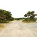 Campground road adjacent to the beach.- Barview Jetty County Park Campground