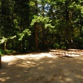 Lewis and Clark National Historic Park day use picnic area.- Fort Clatsop