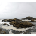 Rocky shore at the southern end of Long Beach.- Cape Disappointment State Park