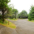 Loop road in Campground C.- Cape Disappointment Campgrounds A, B + C