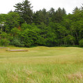 Amphitheater and lawn near Waikiki Beach.- Cape Disappointment Campground D