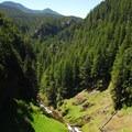 Looking west down the Salt Creek gorge.- Salt Creek Falls