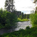 View north from the Metolius River Spring toward Mount Jefferson (10,495').- Metolius River Spring