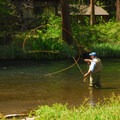 An angler works the Metolius River near Smiling River Campground.- Metolius River Trail