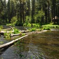 Metolius River.- Pine Rest Campground