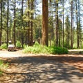 Pine Rest Campground.- Pine Rest Campground