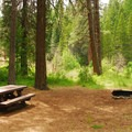 Typical site.- Pioneer Ford Campground