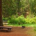 Typical campsite.- Lower Bridge Campground