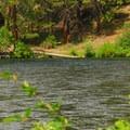 The Metolius River from Lower Bridge Campground.- Lower Bridge Campground
