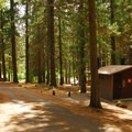Vault toilet facilities.- Lower Bridge Campground