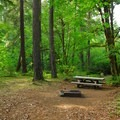 Typical campsite.- Rainbow Campground