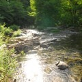 Oak Grove Fork of the Clackamas River.- Rainbow Campground