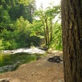 Ripplebrook Campground and Oak Grove Fork of the Clackamas River.- Ripplebrook Campground