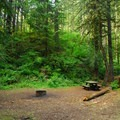 Upper walk-in campsite above vault toilet facilities.- Roaring River Campground