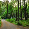 Roaring River Campground.- Roaring River Campground