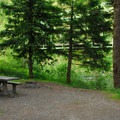 Typical campsite.- Armstrong Campground