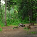 One of the larger campsites at Armstrong Campground.- Armstrong Campground