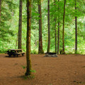 One of the eight walk-in campsites.- Lazy Bend Campground