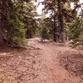 The Divide Creek Trail.- Oval Lake + Palisade Point via Lookout Mountain/Divide Trail