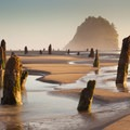 Neskowin's Ghost Forest and Proposal Rock in the background.- Neskowin Beach State Recreation Site