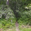 The trailhead to the summit of Eagles Rest.- Eagles Rest Trail Mountain Bike Ride