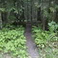 The upper trailhead for Eagles Rest Trail.- Eagles Rest Trail Mountain Bike Ride