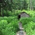Ash Swale Shelter.- Eagles Rest Trail Mountain Bike Ride