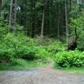 The lower trailhead for Eagles Rest Trail.- Eagles Rest Trail Mountain Bike Ride