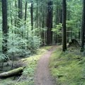 - Eagles Rest Trail Mountain Bike Ride
