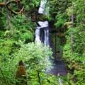 Curly Creek Falls.- Curly Creek Falls
