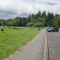 Plenty of parking.- Mary S. Young State Recreation Area