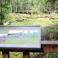 Informational signage along the trail.- Trail of Two Forests