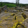 Cooled lava along the return trail.- Ape Caves
