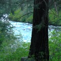 The proximity of the river provides great background noise for sleeping.- Candle Creek Campground