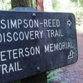- Simpson Reed Grove + Peterson Memorial Trail