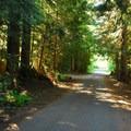 Walupt Lake Campground.- Walupt Lake Campground