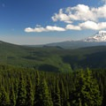 View of Lakeview Mountain (6,660') and Mount Adams (12,280').- Nannie Peak Hike