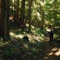 Trailhead from Walupt Lake.- Nannie Peak/PCT Loop Hike