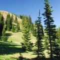 Spur trail leading up to Nannie Peak's summit (6,106').- Nannie Peak/PCT Loop Hike