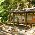 Walupt Lake Horse Camp.- Walupt Lake Horse Camp