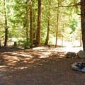 Cat Creek Campsites.- Cat Creek Campground + Campsites
