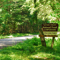 Blue Lake Creek Campground.- Blue Lake Creek Campground