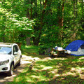 Typical campsite.- Blue Lake Creek Campground