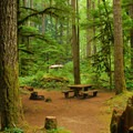 Typical campsite.- North Fork Campground