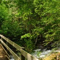 Bridge crossing over the North Fork of the Cispus River.- North Fork Campground